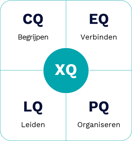 Q-model Nederlands